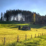 cottage-in-the-field-wallpaper-2560x1600