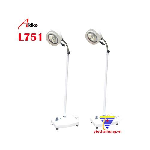 VN1308N-180511-082.jpg